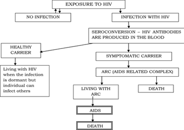 Evaluation of the Therapeutic Efficacy of Antiretroviral Drugs used in the Clinical Management of HIV/AIDS Infection